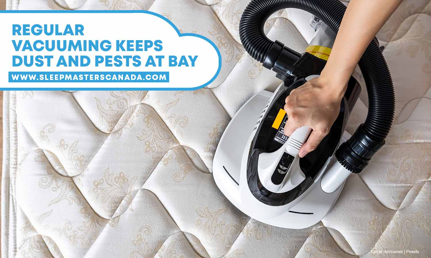 Regular vacuuming keeps dust and pests at baye