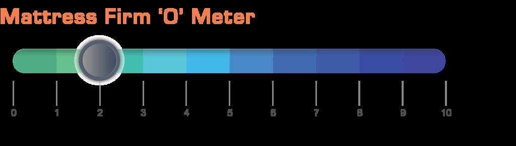 Savoy Meter